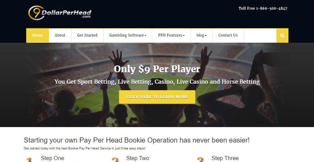 9DollarPerHead.com Bookie Pay Per Head Review